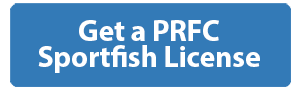 Get a PRFC Sportfishing License