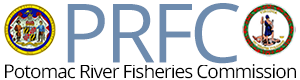 Potomac River Fisheries Commission Logo